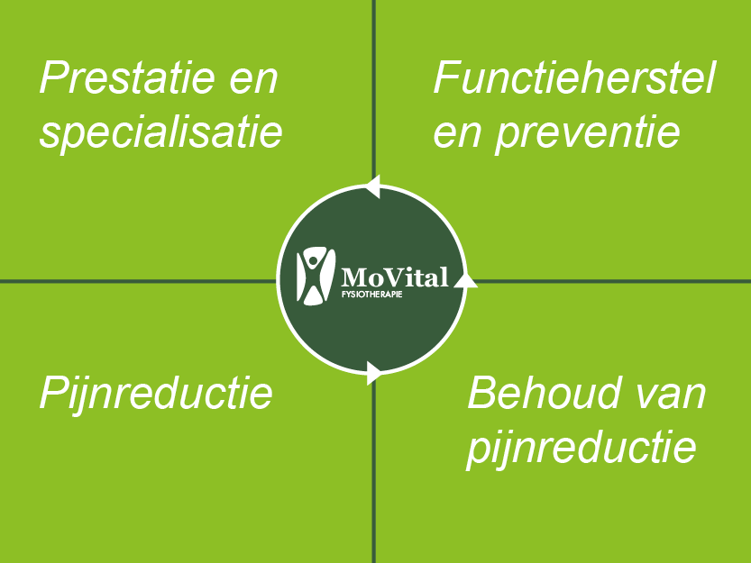 Fysiotherapie model MoVital